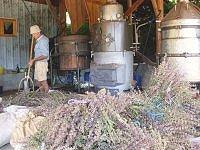 Riviere des aromas Rosans