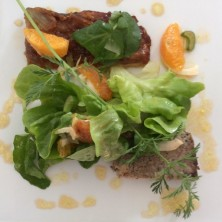 Bridge the inn Aspres