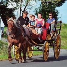 walk-in-caleche