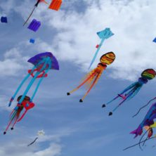 image fete de l'air